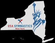 Logo NYS